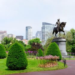 Explore the Public Garden on a Boston mission trip or pilgrimage with Wonder Voyage.