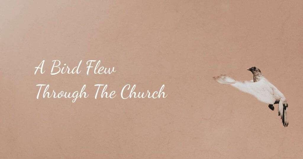 A Bird Flew Through The Church