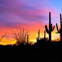 Take in the beauty of the amazing sunsets on a Mission Trip or Pilgrimage to Arizona with Wonder Voyage.