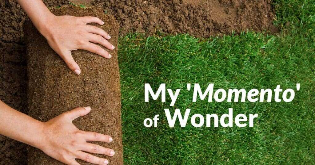 My 'Momento' of Wonder