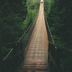 Walk across the Capilano Suspension Bridge and view the British Columbia forest from above on a mission trip or pilgrimage to Vancouver with Wonder Voyage.